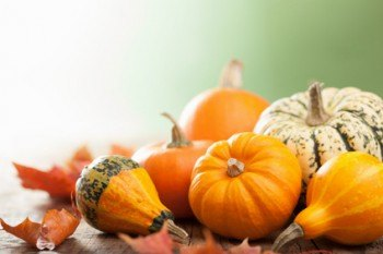 decorative mini pumpkins on wooden background