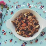 Muesli Con Arándanos y Frutos Secos