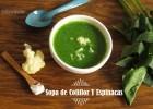 Sopa de Coliflor y Espinacas: Recetas con Hurom